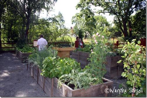 Möjligheternas-trädgård4