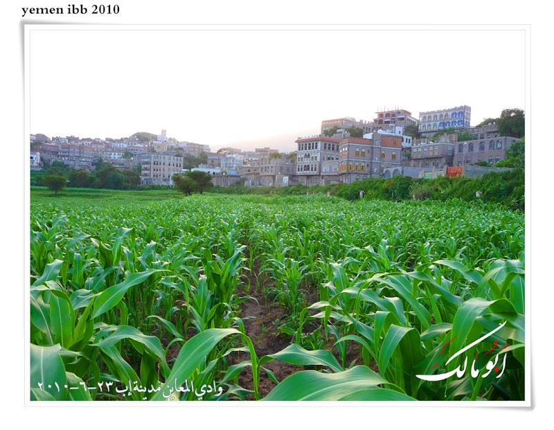 عاصمة السياحة اليمنية إب الخضرا %D8%A7%D9%85%D8%B7%D8%A7%D8%B14o