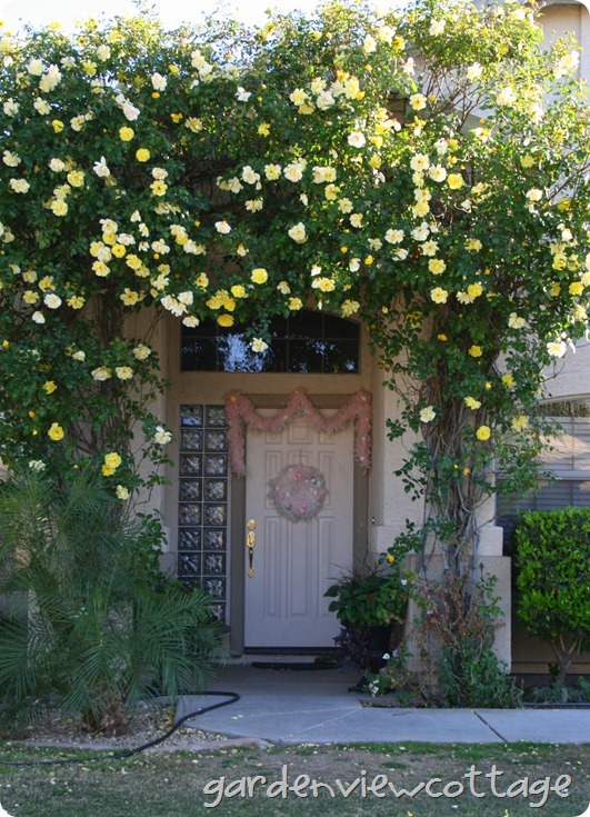 front door in bloom