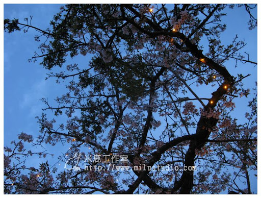 20110328life0324.jpg