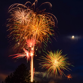 Firework Show by Jesse Peterson - Abstract Fire & Fireworks ( clouds, orange, moon, america, purple, bright, yellow, red, tree, fourth of july, blue, fireworks, 4th of july, night, independence day,  )