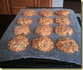 Oatmea Raisin Cookies Fresh From Oven