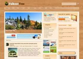 Falkner Tree