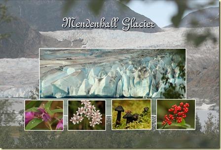 Copy of mendenhall glacier 2 copy
