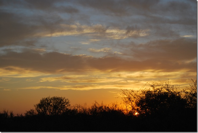 ranch sunset 1