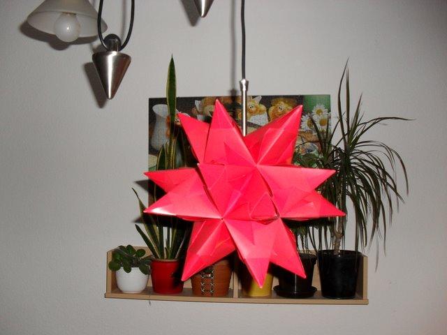bastelsunny ein leuchtender bascetta stern. Black Bedroom Furniture Sets. Home Design Ideas