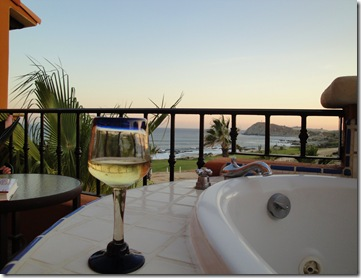 15.  Wine and view