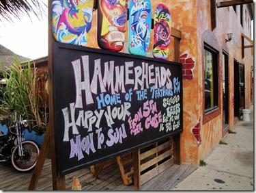 59.  Hammerheads