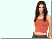 sandra bullock desktop wallpapers 1024x768 6