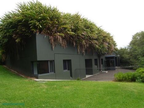 Casa con cubierta vegetal en clima húmedo