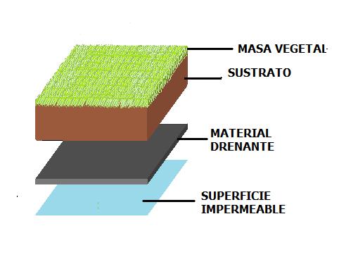 Estructura de una cubierta vegetal en edificio