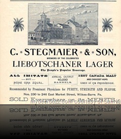 Localbrewing1888_Stegmaier_Factory_Ad