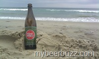 OBXPliny