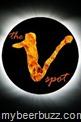 vspot-logo