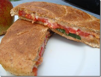 Tomatoe Panini closeup