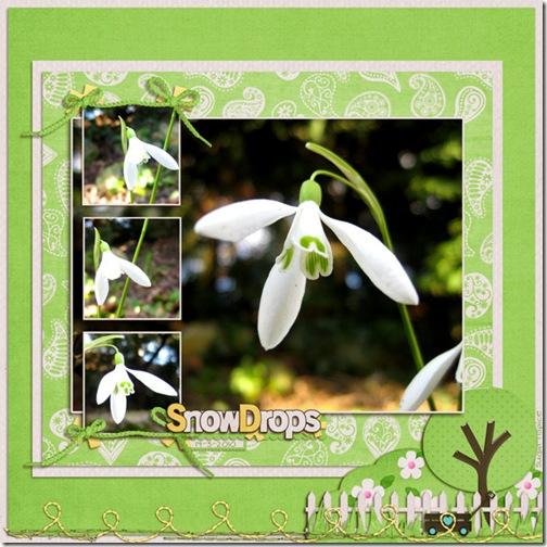SnS-Snowdrops