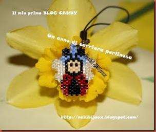 candy nakibijoux
