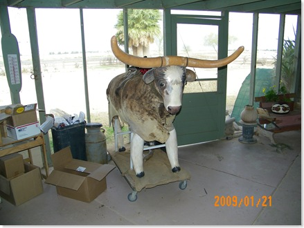 this longhorn is made out of gourds