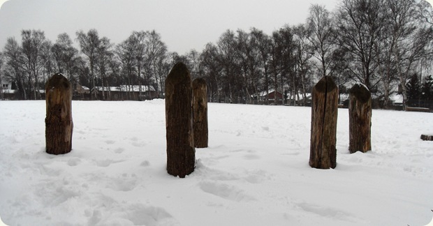 sne februar 2010