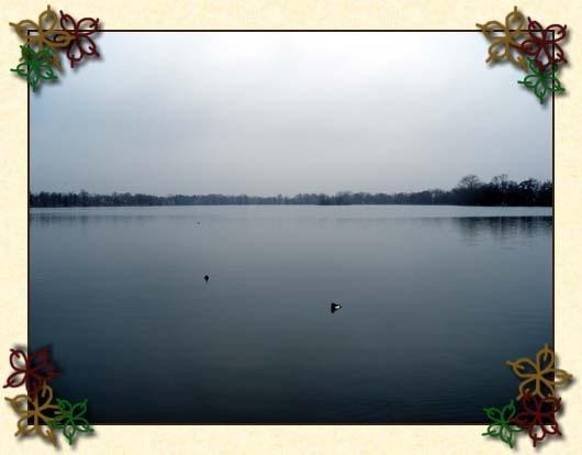 damhussø