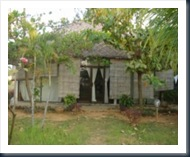 Sunset Beach Bungalow[TIC Jepara] (1)
