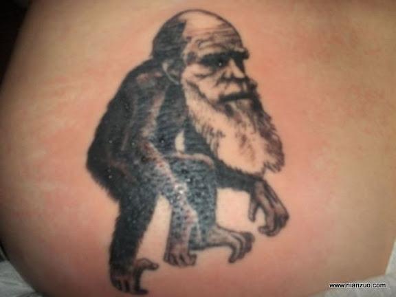 科学纹身 达尔文猴子?,Unblogged,sciencetattoo,猴子,达尔文