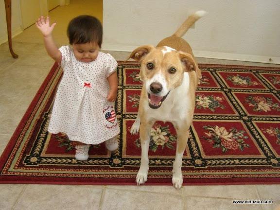 孩子和宠物 快打招呼