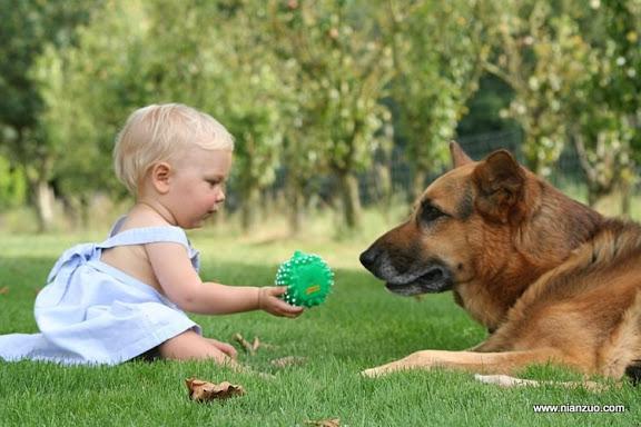 孩子和宠物 分享我最爱的玩具