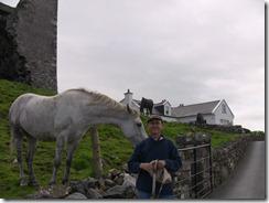 Peter's pony