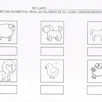 animales14.JPG