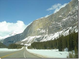 Alberta8