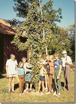 midsummer1970