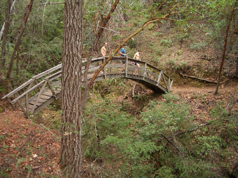 Sweet bridge on the Eagle Rock Trail 