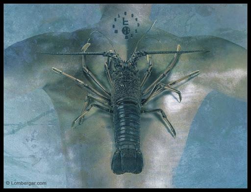 Symbiosis 9