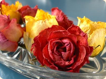 Tørrede roser