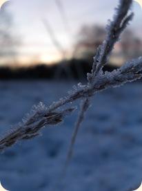 Vintersmukt