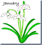 Januarycol
