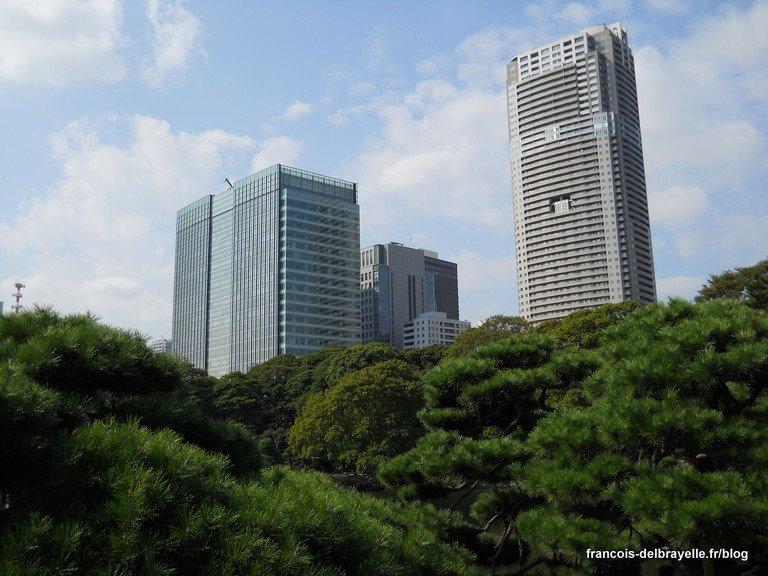 Contraste avec les buildings