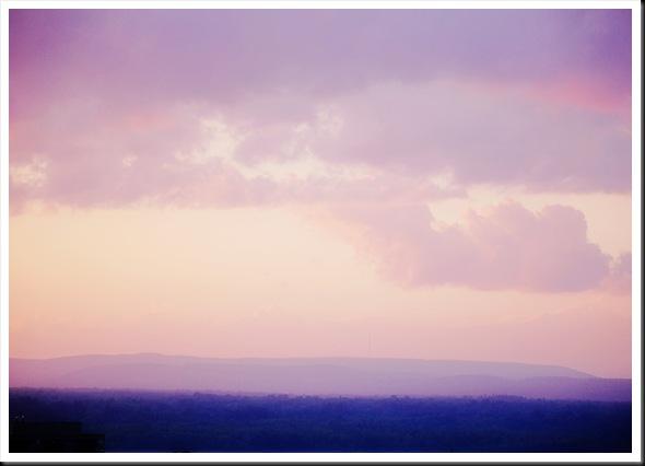 sunset lilac