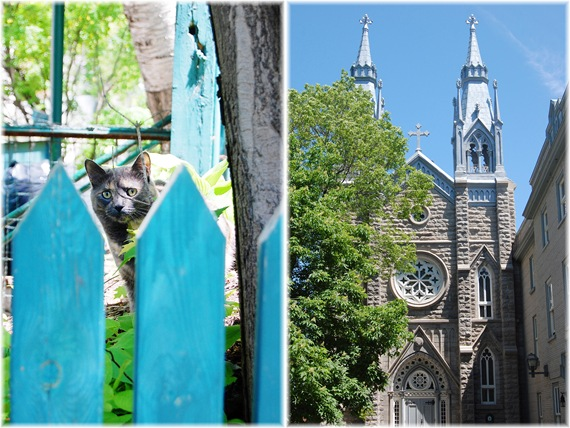 CAT CHURCH DIPTYCH