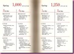 spring calorie plan 2