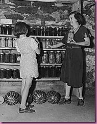 basement canning