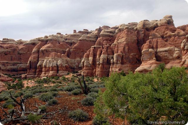 CanyonlandsNeedles_2569