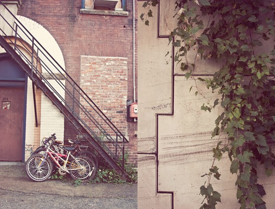 bikediptych