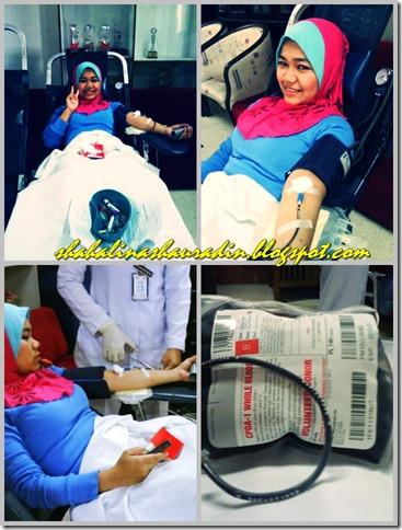 derma darah