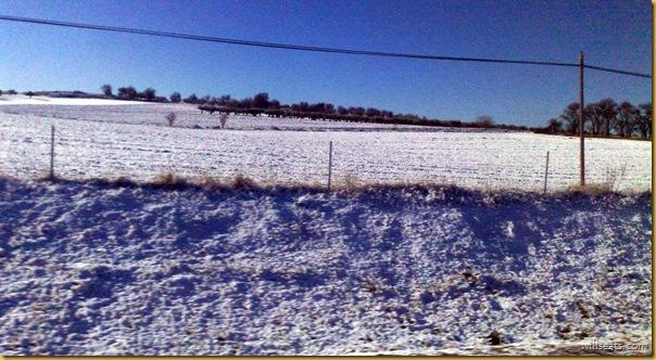 nieve-02122008302