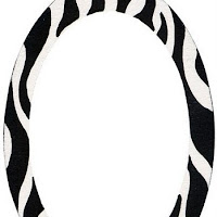 FR-Zebra.jpg.jpg