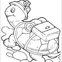 Dibujar-Tortugas.jpg