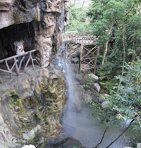 View of the waterfall inside the amazing hillside aviary