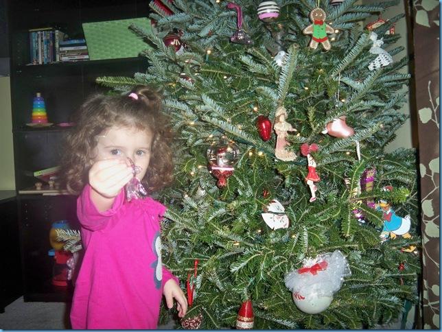 12.10 ornament